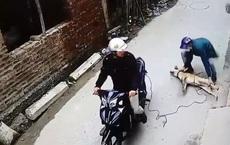 Trên đường đi ăn trộm chó bị phát hiện, đối tượng dùng súng điện tấn công công an xã