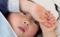 Trẻ 13 tuổi nguy kịch vì sốt xuất huyết ở Trà Vinh: 4 trường hợp nhất định bố mẹ phải đưa con đi viện