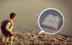 Cậu bé tiểu học nhặt được viên đá lạ giữa đường, đem giao nộp cho nhà nước - 45 năm sau, các chuyên gia lại tìm đến