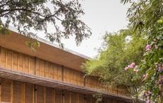 Ngôi nhà mái bằng trấu, vách vôi ở Đồng Nai nổi bật trên báo ngoại