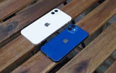 Đằng sau thất bại của iPhone 12 Mini là những toan tính khôn ngoan đến mức Samsung và Google cũng đều phải 'học hỏi'