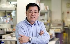 GS Nguyễn Văn Tuấn: Kết quả thử nghiệm cho thấy vaccine mRNA giảm lây nhiễm 100% ở trẻ 12-17 tuổi, lợi ích của vaccine với trẻ em rất cao!