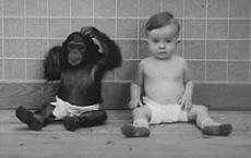Cho con trai và tinh tinh ăn ngủ cùng nhau, 9 tháng sau cặp đôi phải cho dừng gấp thí nghiệm: Kết quả ngoài dự đoán