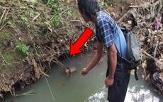 Người đàn ông thả 1 sợi dây vào khe hang, chỉ lát sau đã kéo lên một sinh vật thuôn dài
