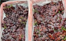 Sự thật về loại nho không hạt, siêu ngọt, siêu giòn và chỉ hơn 30.000 đồng/kg đang gây sốt tại Việt Nam
