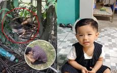 Hành trình 5 ngày 4 đêm tìm kiếm bé trai 2 tuổi ở Bình Dương trong nước mắt, bé đã rời xa cha mẹ mãi mãi
