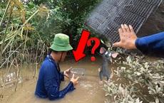 Ý tưởng độc lạ: Đem 10 chiếc bẫy chuột thả xuống nước, kết quả thu được đầy bất ngờ!