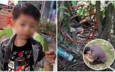 Vụ tìm thấy thi thể bé trai 2 tuổi ở Bình Dương: Công an điều tra dấu hiệu hình sự, mời một số người lên làm việc