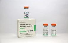 Vắc xin Vero Cell của Sinopharm có những tác dụng phụ nào?