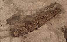 Mộ cổ có 29 bộ hài cốt, chuyên gia thất kinh: Không ngờ người xưa dùng thứ này để hiến tế