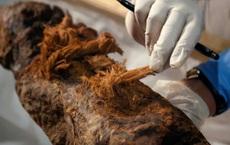 Phát hiện phi thường trong xác ướp 4.000 năm tuổi: Lịch sử phải viết lại!
