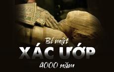 Phát hiện 'chấn động lịch sử' trong xác ướp 4.000 năm tuổi: Sử sách buộc phải viết lại!