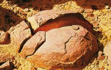 Làm rơi vỡ tảng đá tự nhiên 6000 tuổi, đội công nhân á khẩu khi thấy cảnh tượng bên trong