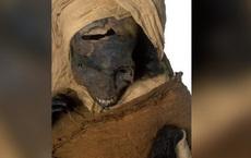 Chụp CT, phát hiện điều kinh hoàng trên xác ướp Ai Cập: Điều bất thường nhất nằm trong quan tài
