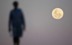Điều gì sẽ xảy ra nếu không có Mặt trăng?
