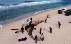 """1.000 tấn hắc ín vây chiếm 90% bờ biển: Israel tố Iran """"diễn kịch"""" bằng hành động khủng bố môi trường"""