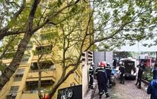 Thiếu nữ rơi từ tầng cao chung cư xuống tử vong ở Hà Nội đang là học sinh lớp 10