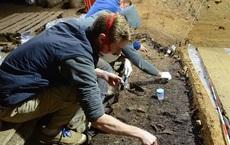 Tìm thấy 3 con người lai giữa 2 loài, là tổ tiên người Đông Á và châu Mỹ