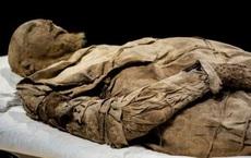Bí ẩn bào thai giấu giữa 2 chân xác ướp vị giám mục ở thế kỷ 17