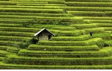 Việt Nam tuyệt đẹp qua ống kính nhiếp ảnh gia nước ngoài