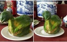 """Quả đu đủ """"hiếm thấy nhất Việt Nam"""", uốn éo thành hình nguyên con gà luộc, nhiều người bảo phải chi nhân được giống thì mỗi dịp cúng kiếng đắt khách phải biết"""