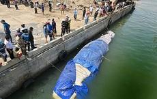 Một số hình ảnh đưa cá voi nặng hơn 4 tấn vào bờ
