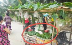 Anh bán rau khiến cả khu nháo nhào vì có cách bán hàng quá cao tay, dân mạng bái phục: Bậc thầy marketing là đây!