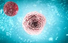 Vắc xin ung thư cá nhân hóa - phương pháp điều trị ung thư mới đầy hứa hẹn