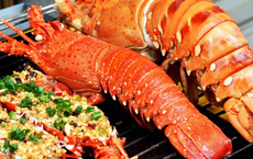 Lời khuyên quý giá khi ăn hải sản