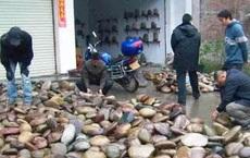Ngôi làng kỳ lạ nơi chỉ cần nhặt vài cục đá cũng đủ mua xe, sửa nhà