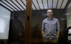 """Mạng sống của Navalny như """"chỉ mành treo chuông"""" - ĐS Nga nói """"không được chết"""", Mỹ cảnh báo rắn"""