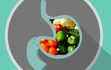 Cơ thể tiêu hóa thức ăn trong bao lâu? Đơn giản nhưng không phải ai cũng biết