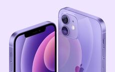 Apple ra mắt iPhone 12 màu tím, giá không đổi