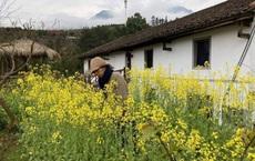 Cô gái 40 tuổi không kết hôn, chuyển nhà vào núi ở: Tiêu hết tiền tiết kiệm để sống ở nhà đất, sửa chuồng lợn thành phòng làm việc