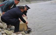 Đi làm về vô tình nhìn thấy 1 con vật dị dạng trên kênh nước, người đàn ông lập tức gọi điện ngay cho cảnh sát