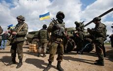 Bước đi nguy hiểm của Ukraine khi đề xuất tập trận với NATO