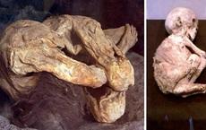 Bí ẩn xác ướp cổ xưa bị bỏ quên trong nhà xe ở California