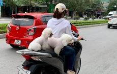 """Cô gái lái xe máy khiến cả phố """"tim đập nhanh"""", nhất là nhìn vào phần yên sau"""