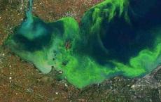 Sinh vật hàng tỉ tuổi phóng yếu tố chết nhanh vào không khí nhiều nơi trên thế giới