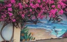 Khởi tố, bắt giam kẻ cưa trộm hoa giấy 20 năm tuổi ở Vũng Tàu