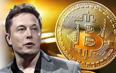 Để bảo vệ môi trường, Elon Musk 'trở mặt', dừng thanh toán bằng Bitcoin khi mua xe Tesla
