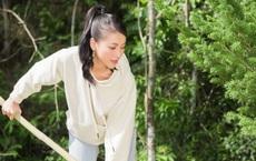 Hoa hậu Phương Khánh ăn vận giản dị đi trồng cây xanh