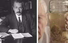 Những vĩ nhân thân xác không còn nguyên vẹn sau khi mất: Não của Einstein thậm chí bị cắt thành 240 mảnh