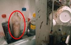 Hình ảnh gây ám ảnh trong một căn bếp: Từ một chai gia vị khiến cả nhà hoang mang