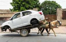 24h qua ảnh:  Người đàn ông dùng xe ngựa chở ô tô đi sửa