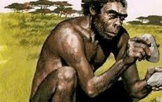 5 vạn năm trước tổ tiên chúng ta đã 'quan hệ tình cảm' với loài người khác, bây giờ cái giá phải trả là gì?