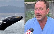 Mỹ: 30 giây kinh hoàng của ngư dân rơi vào miệng cá voi