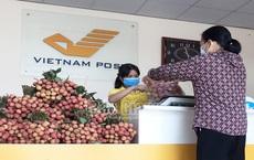 Công đoàn Bưu điện tỉnh Bắc Giang triển khai bán vải thiều không lợi nhuận