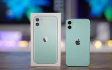 """iPhone 11 giảm giá """"bay nóc"""", loạt điện thoại iPhone SE, iPhone XR cũng chạy đua với giá rẻ"""