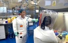 """Nữ """"người dơi"""" Trung Quốc hiếm hoi trả lời báo Mỹ về nghi vấn rò rỉ virus: Tôi không làm gì sai"""